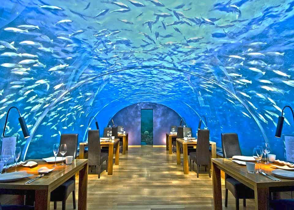 Restaurantes exoticos
